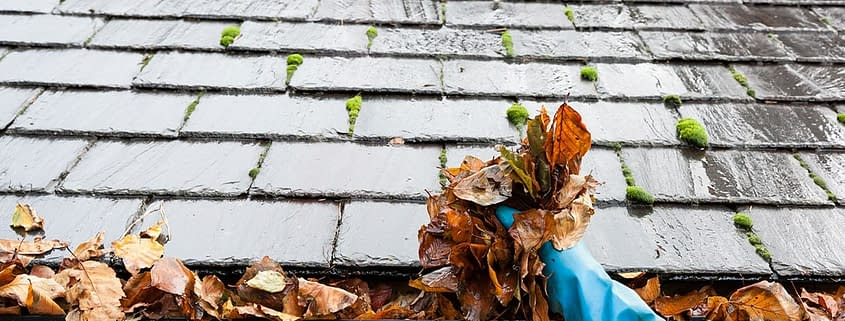 How to Get Your Roof Ready For Fall